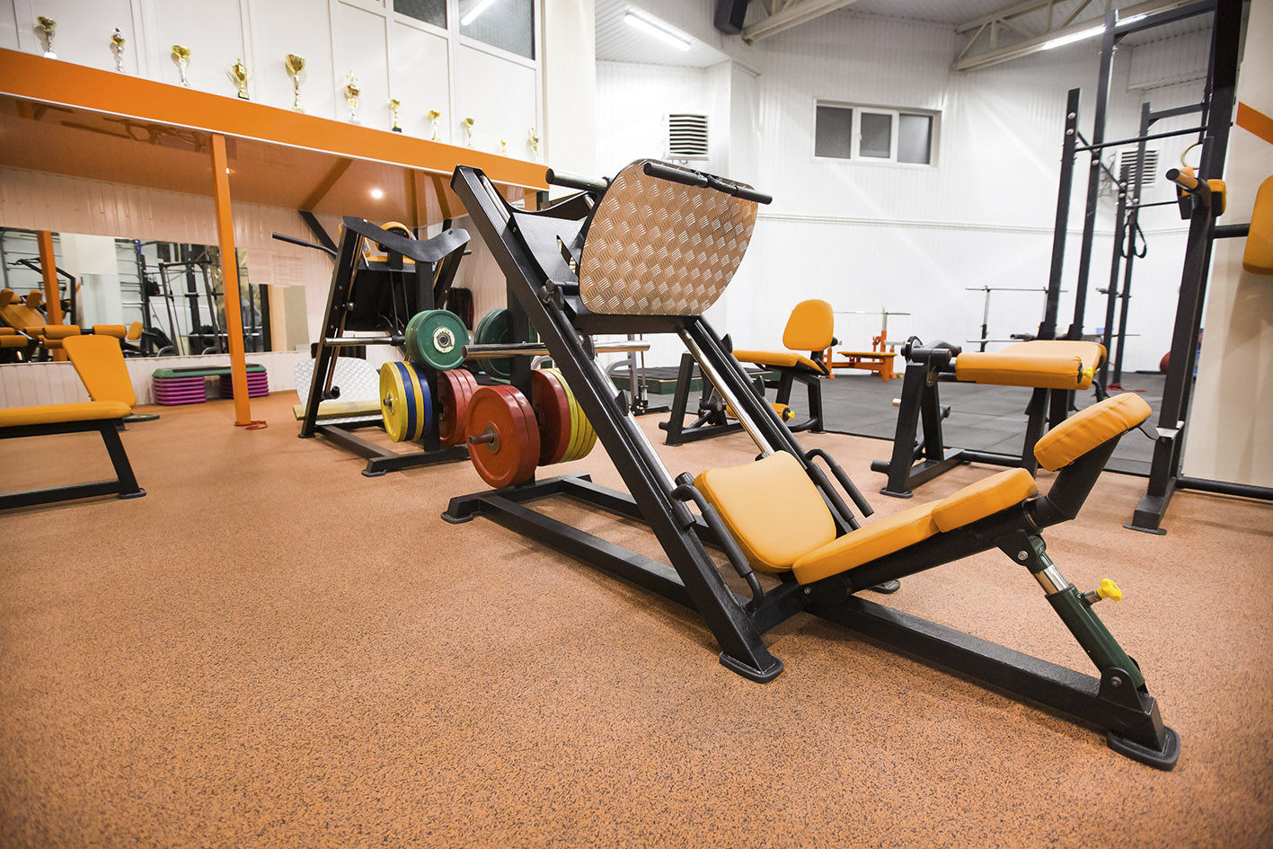 baza gym 4